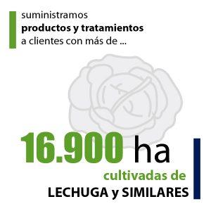 cifras_dq_03